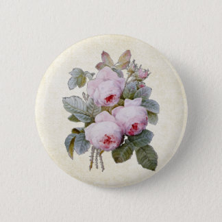 P.J. Redoute Bourbon Rose Floral Button