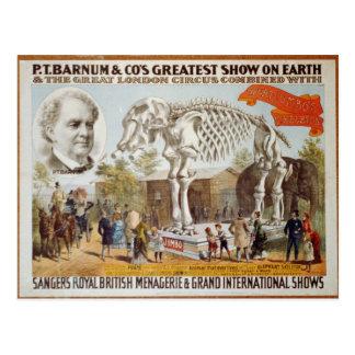 P.T. Barnum Show postcard