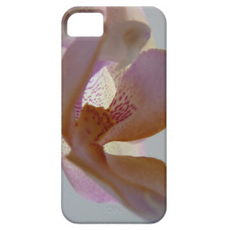 © P Wherrell Angelic pink and yellow orchid photo iPhone 5 Covers