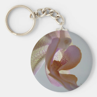 © P Wherrell Angelic pink and yellow orchid photo Basic Round Button Keychain