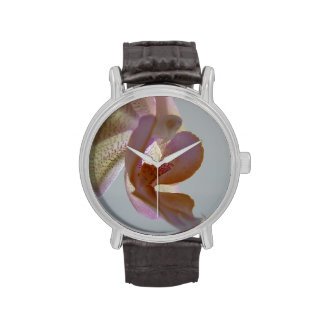 © P Wherrell Angelic pink and yellow orchid photo Wrist Watch