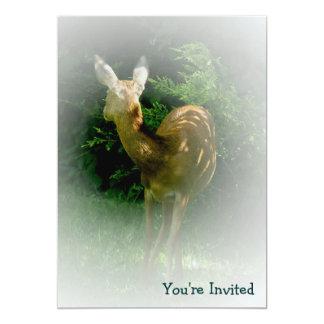 © P Wherrell Beautiful animal lover's roe deer 5x7 Paper Invitation Card
