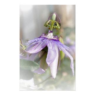 © P Wherrell Beautiful pale purple passion flower Customized Stationery