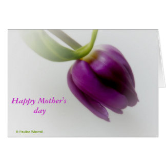 © P Wherrell Happy Mother's day dreamy pink tulip Card