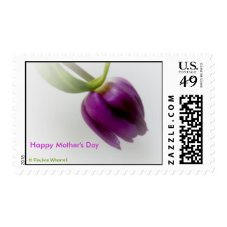 © P Wherrell Happy Mother's day dreamy pink tulip Postage Stamp