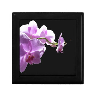 © P Wherrell Pink orchid on black background Jewelry Box
