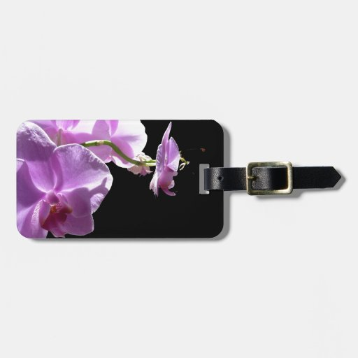 © P Wherrell Pink orchid on black background Tags For Luggage