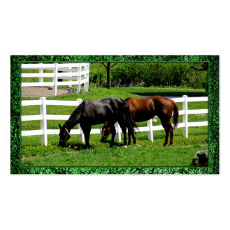 Pa Horse Equestrian Business Card
