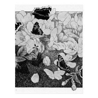 Paa Eplegrenen by Theodor Severin Kittelsen Postcard