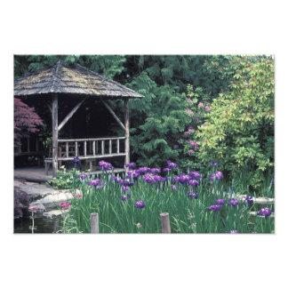 Pabellón de madera en el jardín hundido adentro fotografías