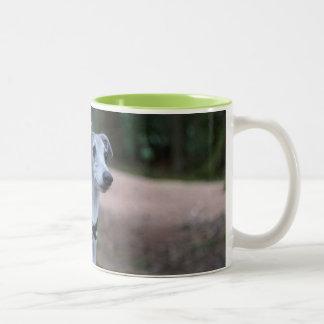 Pacha The Whippet Mug