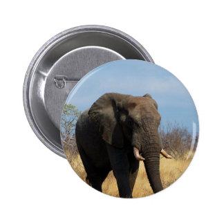 Pachyderm Round Button