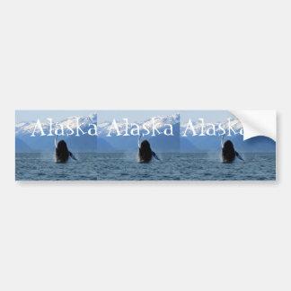 Pacific Ballet; Alaska Bumper Sticker