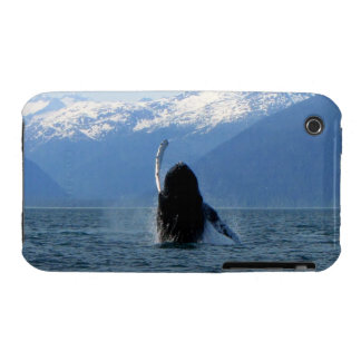 Pacific Ballet iPhone 3 Case