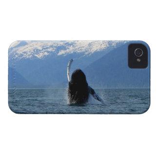 Pacific Ballet iPhone 4 Case