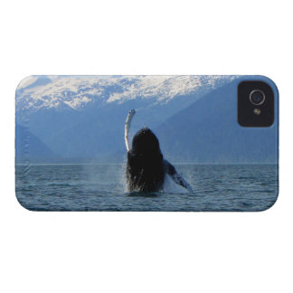 Pacific Ballet iPhone 4 Cover