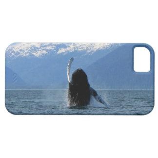 Pacific Ballet iPhone SE/5/5s Case