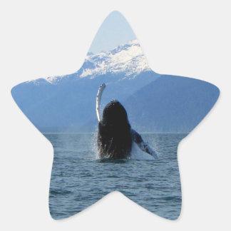 Pacific Ballet Star Sticker