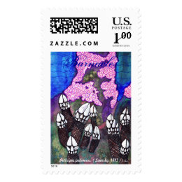 Pacific Barnacles Postage