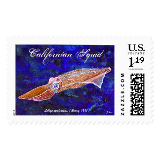 Pacific Californian Squid Postage