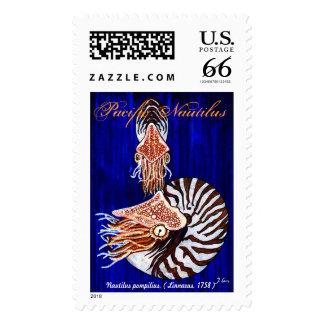 Pacific Chambered Nautilus Stamp