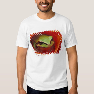 Pacific Chorus frog in dahlia. Credit as: Shirt