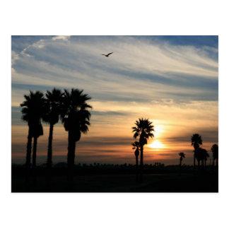 Pacific Coast Postcard