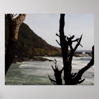 """Pacific Coast"" Poster"