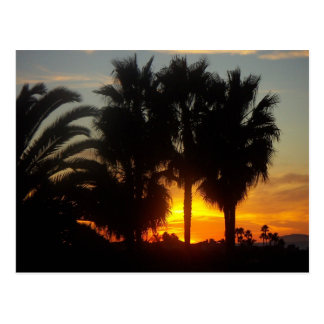 Pacific Coast Sunset Postcard
