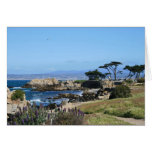 Pacific Coastline, Blank Note Card