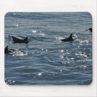 Pacific Common Dolphin Mousepad