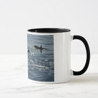 Pacific Common Dolphin Mug