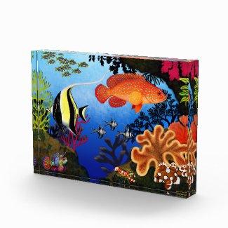 Pacific Coral Reef Aquarium Fish Award