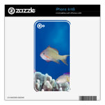 Pacific fairly baslet skins for iPhone 4