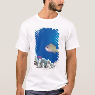 Pacific fairly baslet T-Shirt