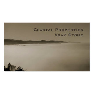 Pacific Fog coastline brown pearl Double-Sided Standard Business Cards (Pack Of 100)