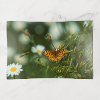 Pacific Fritillary Butterfly Trinket Trays