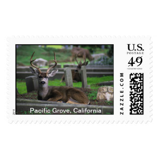 Pacific Grove CA Postage Stamp