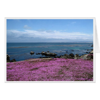Pacific Grove, CA., USA Notecards Card