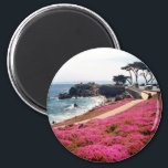 """Pacific Grove-Monterey Calif Magnet<br><div class=""""desc"""">Groundflowers by the beach in Pacific Grove-Monterey Calif http://www.publicdomainpictures.net/view-image.php?image=6448</div>"""
