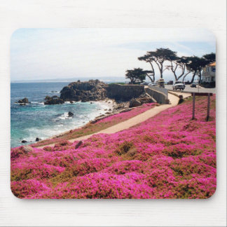 Pacific Grove-Monterey Calif Mouse Pad