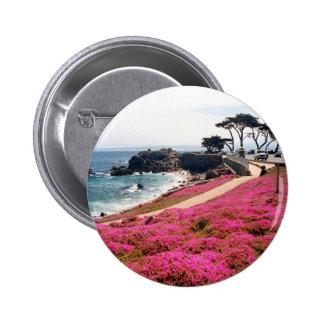 Pacific Grove-Monterey Calif Pins