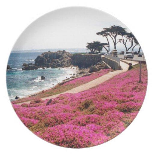 Pacific Grove-Monterey Calif Plate