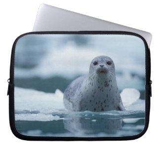 pacific harbor seal, Phoca vitulina richardsi Computer Sleeve