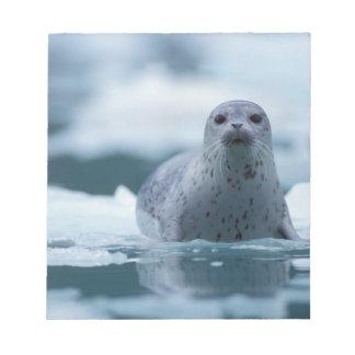 pacific harbor seal, Phoca vitulina richardsi Notepad