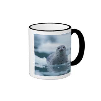 pacific harbor seal, Phoca vitulina richardsi Ringer Mug