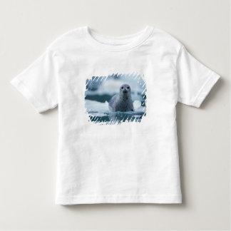 pacific harbor seal, Phoca vitulina richardsi T Shirt