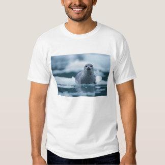 pacific harbor seal, Phoca vitulina richardsi Tee Shirt