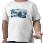 pacific harbor seal, Phoca vitulina richardsi T-shirts