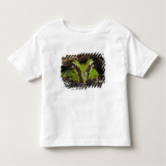 Pacific Horned Frog Ceratophrys stolzmanni) 2 T-shirt